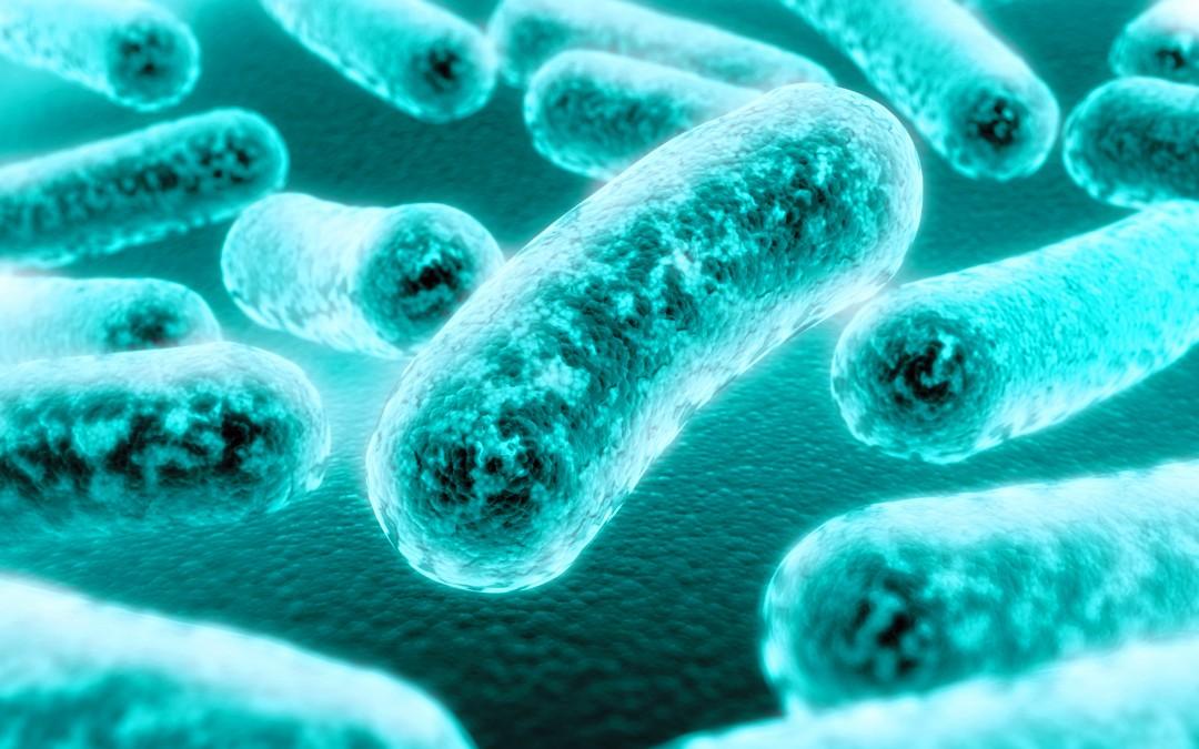En ETIF presentaremos el primer detector de contaminación microbiológica en línea del país